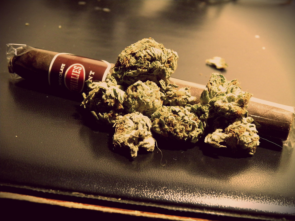 Pictures of Weed Blunts http://stonerdays.com/top-10-ways-to-smoke-weed