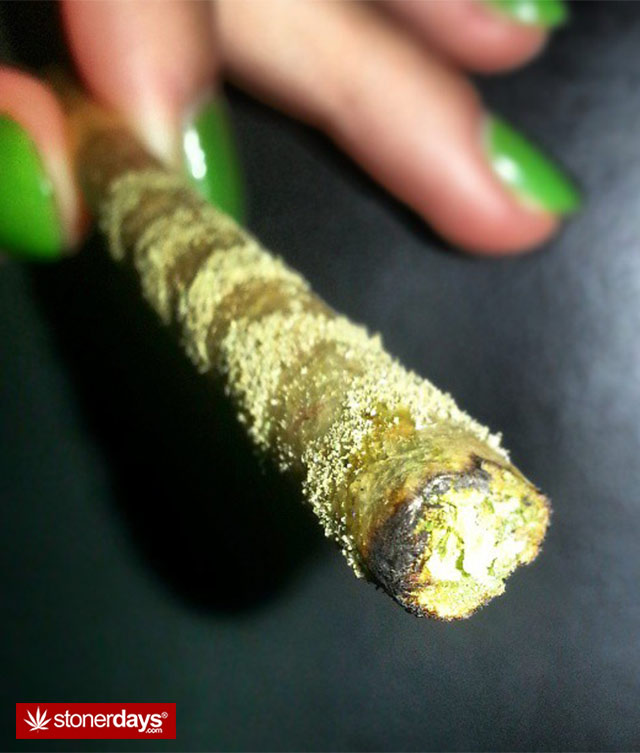 marijuana-pictures-fat-blunt (7)