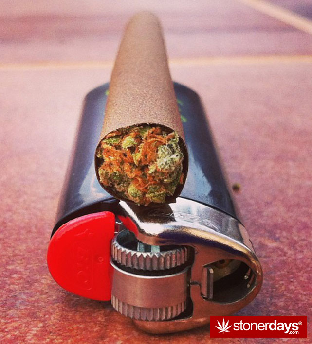 Mary Jane Wake N Bake Stoner Pictures - Stoner Blog