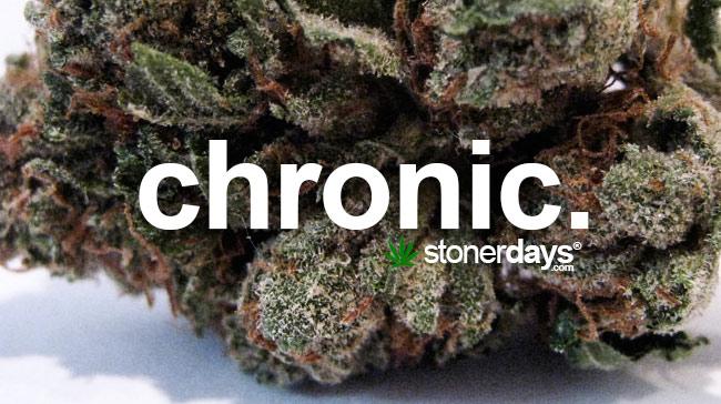 chronic-marijuana