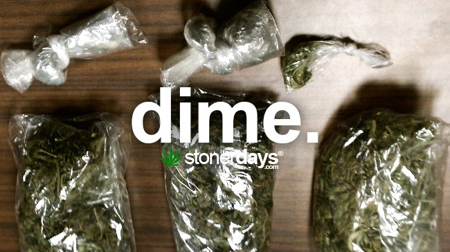 Stoner Dictionary Dime Bag Stonerdays