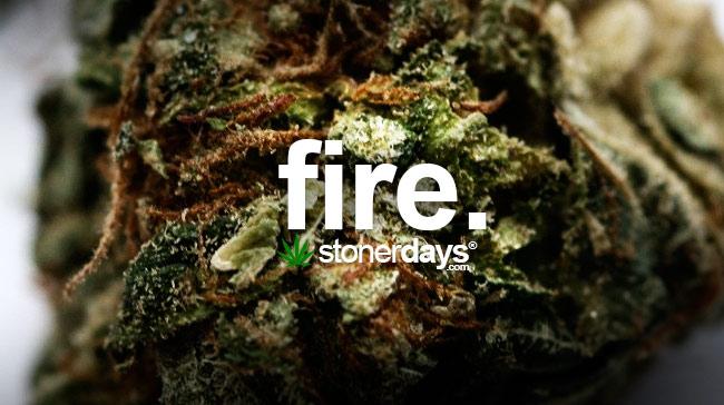 fire-weed-marijuana