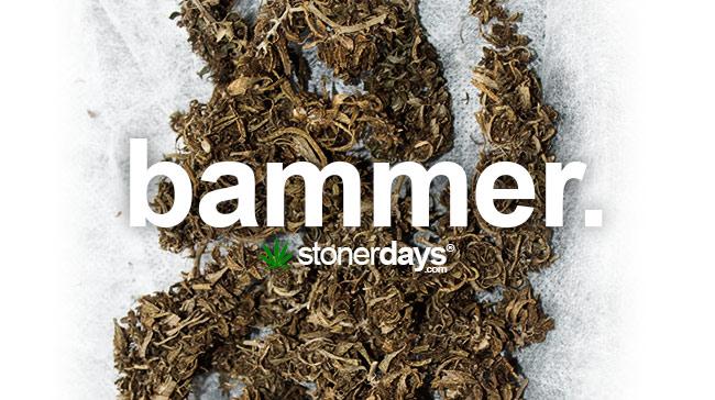 bammer-marijuana-swag