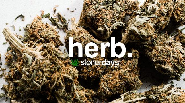 herb-marijuana-herbs