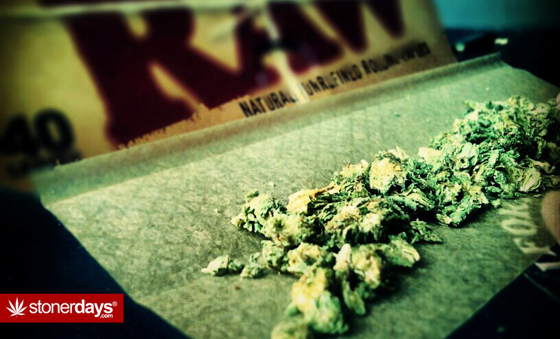 raw-papers-weed