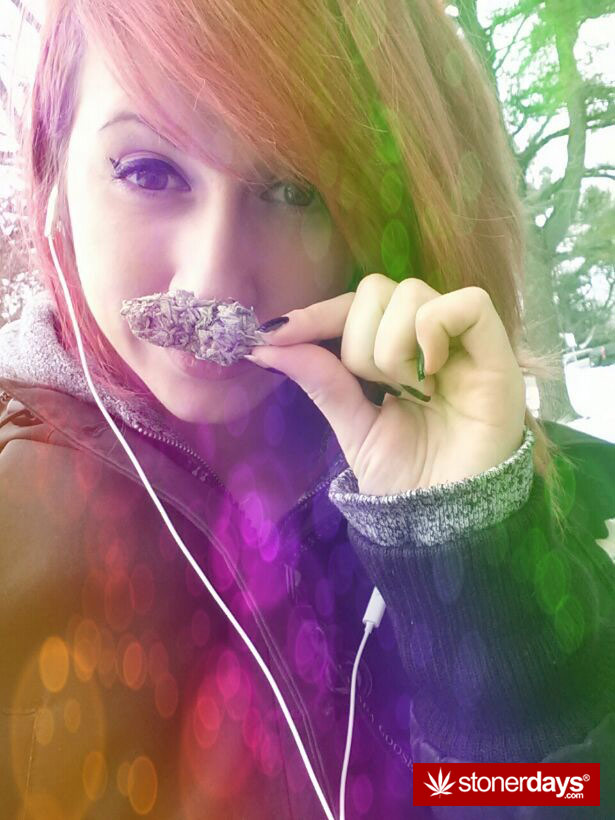 weed-stache-420