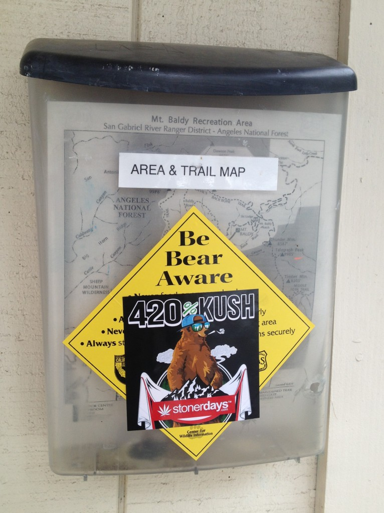 Be Bear Aware 420 kush