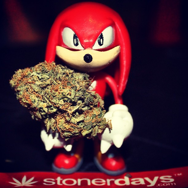 StonerDays-Stay-Blazed-Marijuana-420 (11)