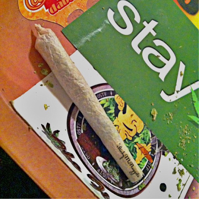 StonerDays-Stay-Blazed-Marijuana-420 (14)