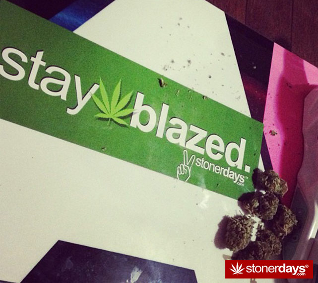 StonerDays-Stay-Blazed-Marijuana-420 (147)