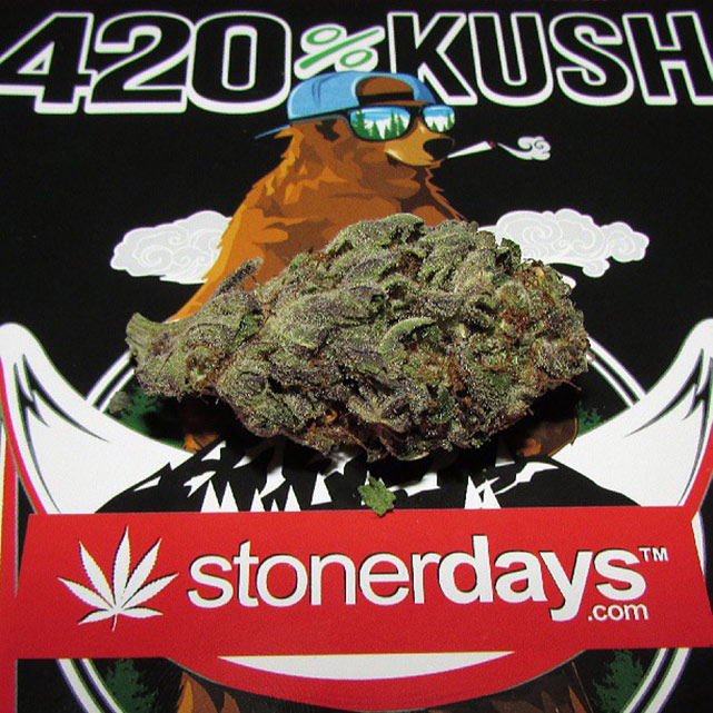 StonerDays-Stay-Blazed-Marijuana-420 (17)