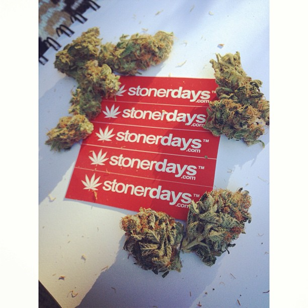 StonerDays-Stay-Blazed-Marijuana-420 (25)
