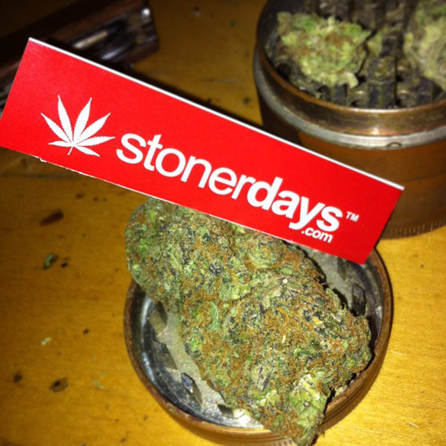 StonerDays-Stay-Blazed-Marijuana-420 (90)