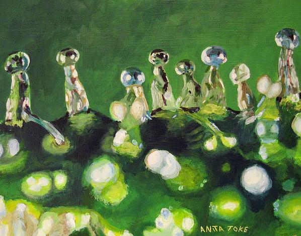 Anita Toke 6