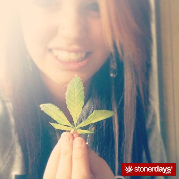 weed-leaf-sexy