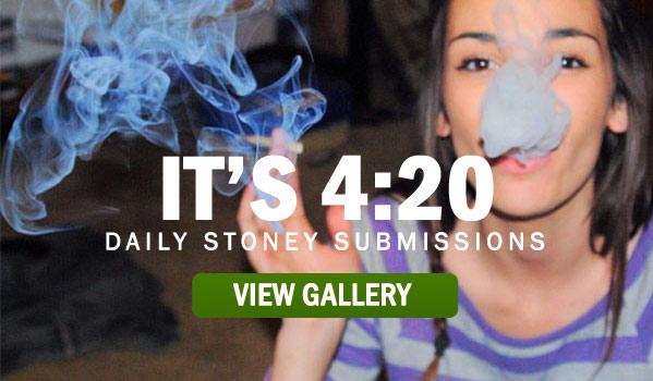 IS-IT-420