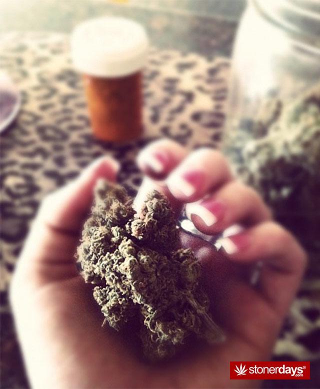 Marijuana-pictures (14)