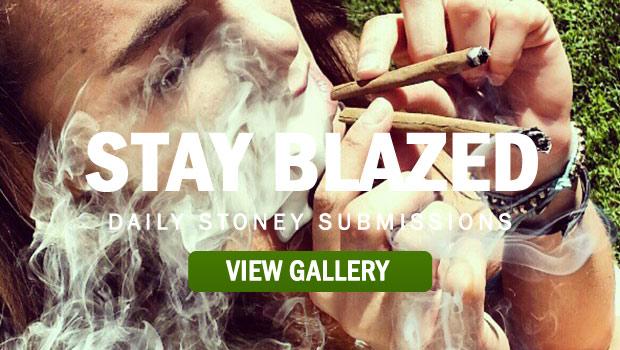 STAY-BLAZED