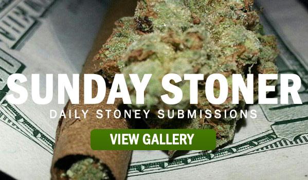 SUNDAY-STONER