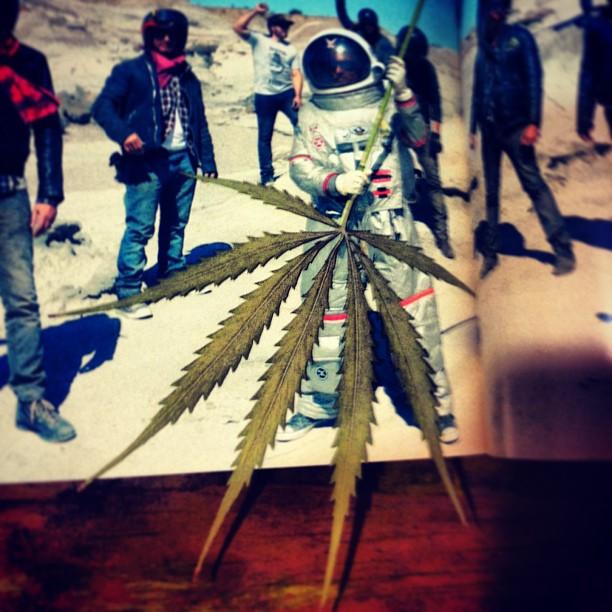 funny-marijuana-pics (17)