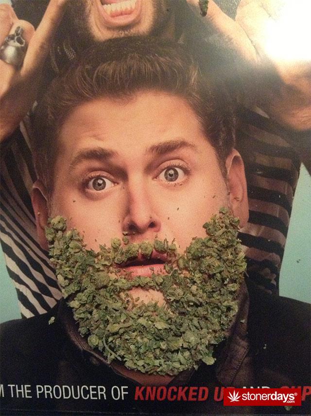 funny-marijuana-pics-(8)