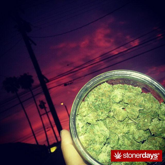 hot-stoners-bong-weed-pics (67)