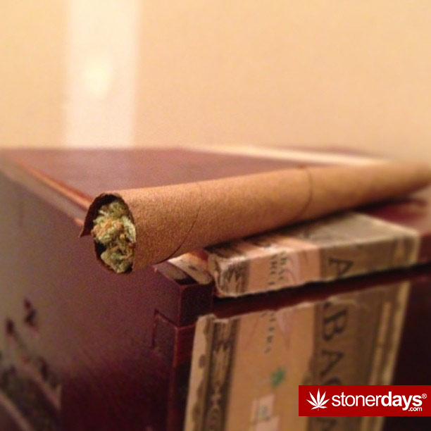 keep-one-rolled