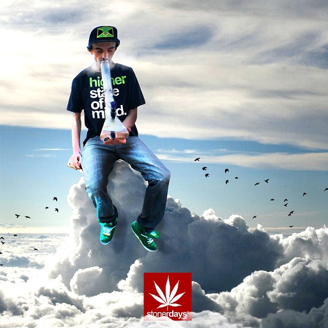 marijuana-clothing-stonerdays (1)