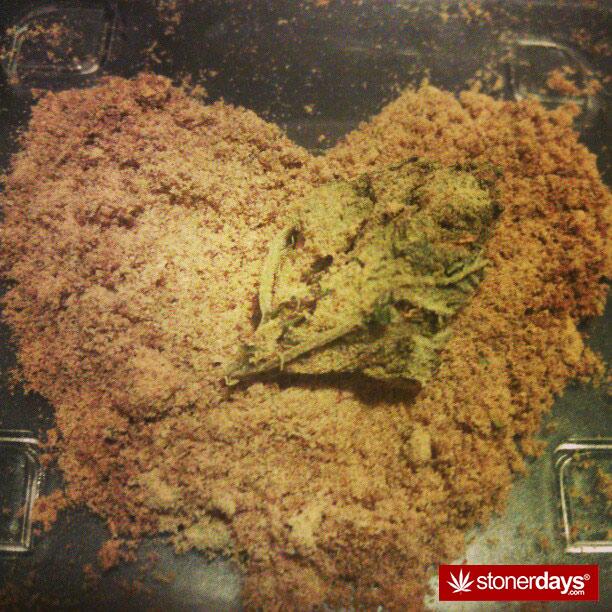 marijuana-pics (2)