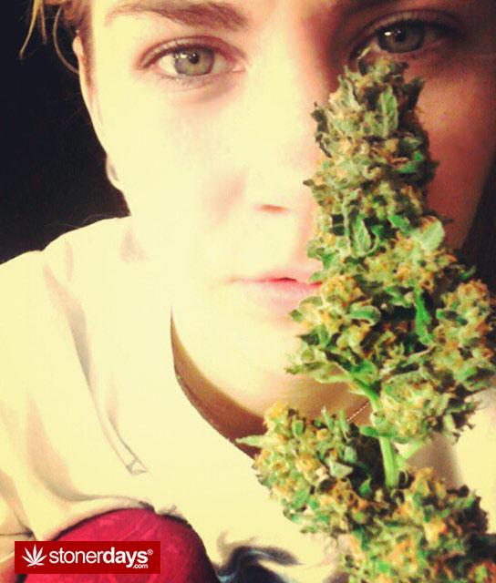 marijuana-pics-(24)