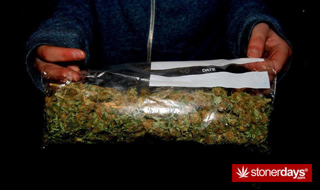 marijuana-pictures-(6)