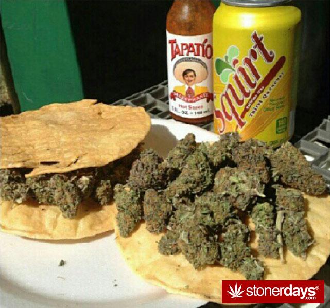 marijuana-stoner-stoned-girls (155)