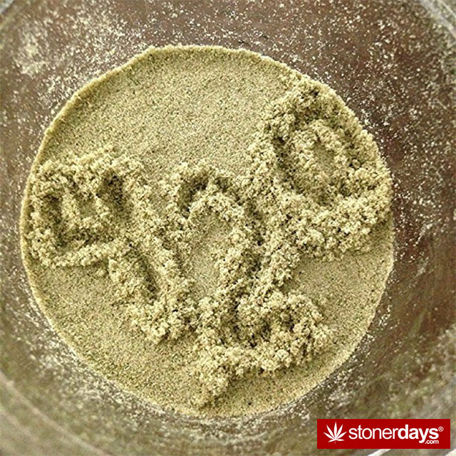 random-marijuana-pics-(10)