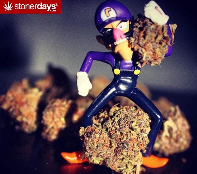 stoner-girls-smoking-weed (21)