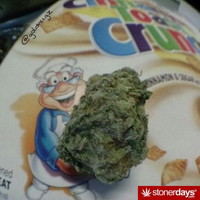 stoner-girls-smoking-weed (28)