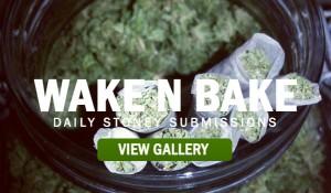 stoners-marijuana-pictures