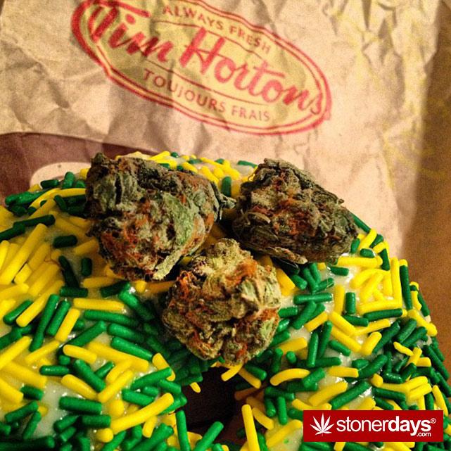 stoners-pics-of-pot-marijuana-pictures (181)