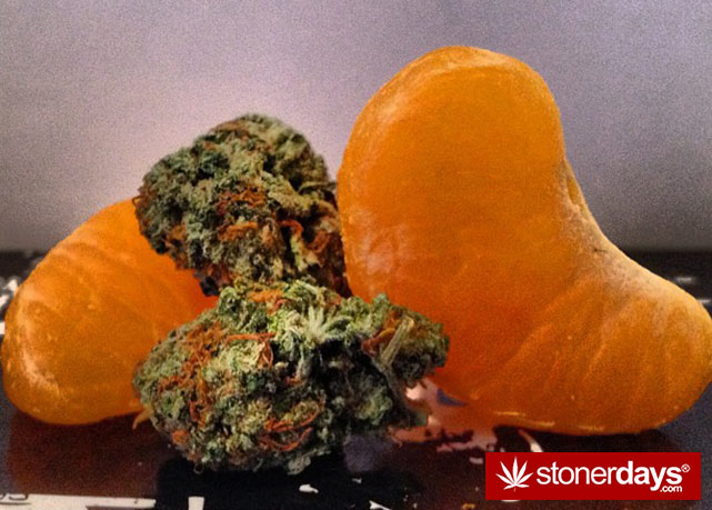 stoners-pics-of-pot-marijuana-pictures (955)