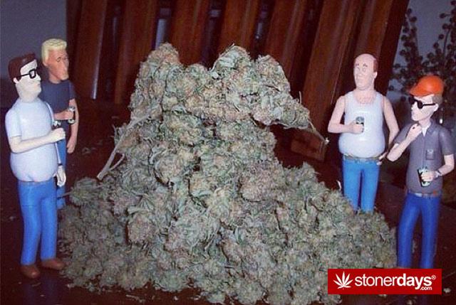 weed-stuff-marijuana-pictures (25)