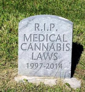 stoner-cannabis-laws