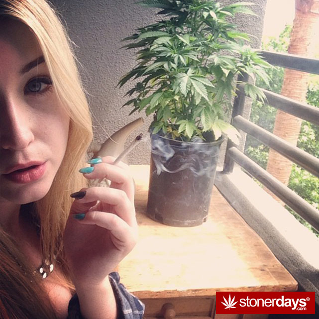 Blunt-Joint-sexy-stoner (293)