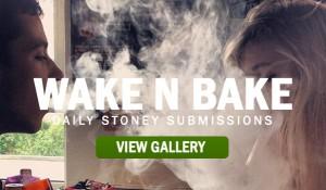 stoners-stoner-marijuana
