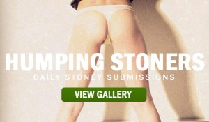 HUMPING-STONERS