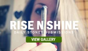 RISE-N-SHINE-STONERS