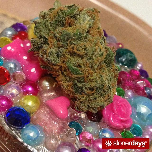SMOKING-BONGS-WEED (17)