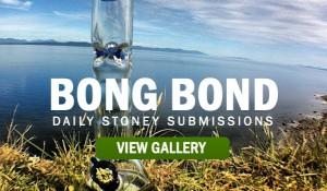 STONER-BOND-BONG