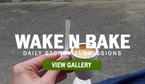 STONERS-ROLL-YOUR-JS