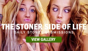 THE-STONER-SIDE-OF-LIFE