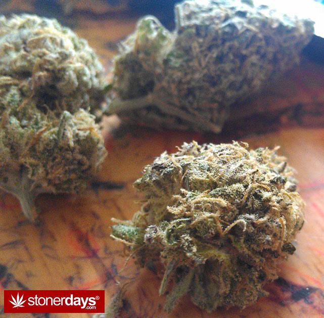 happy-420-stoned-marijuana (115)