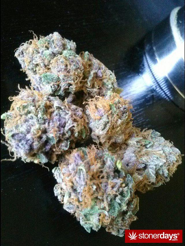 happy-420-stoned-marijuana (128)